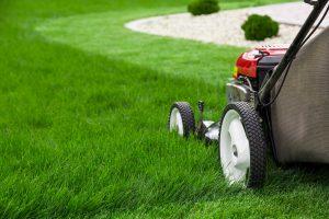 gräsklippning motor